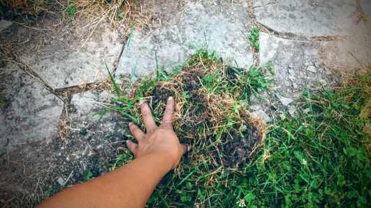 touching the earth + clearing the path